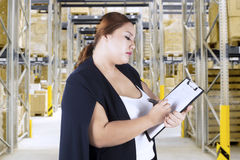 Entrepreneur checking goods list in warehouse. Young entrepreneur checking goods list on a clipboard while standing in warehouse Stock Photos