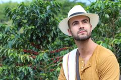 Entrepreneur sud-américain authentique de café images libres de droits