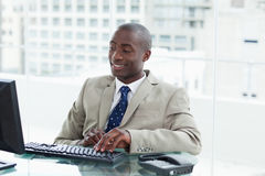 Entrepreneur using a computer Stock Photo
