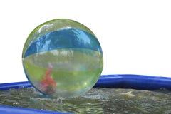 Entretenimiento en el agua, zorbing foto de archivo libre de regalías