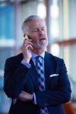 Entretien supérieur d'homme d'affaires au téléphone portable Images stock