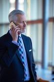 Entretien supérieur d'homme d'affaires au téléphone portable Image stock