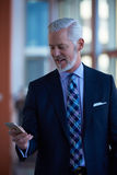 Entretien supérieur d'homme d'affaires au téléphone portable Photos libres de droits