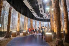 Entrevista do pavilhão da descoberta do mundo Flora Exposition de Taichung foto de stock