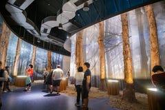 Entrevista do pavilh?o da descoberta do mundo Flora Exposition de Taichung imagens de stock