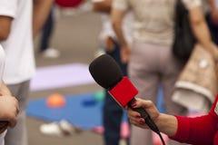 Entrevista dos media Fotos de Stock