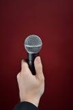 Entrevue avec le microphone Photographie stock libre de droits