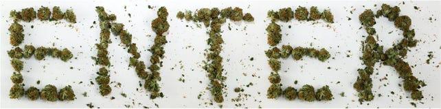 Entri compitato con marijuana Fotografia Stock Libera da Diritti