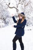 Entri in mio paese delle meraviglie dell'inverno Immagine Stock Libera da Diritti