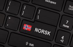 Entri nel bottone con la bandiera Norvegia - concetto della lingua Fotografia Stock Libera da Diritti