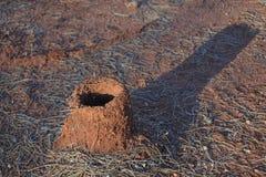 Entroterra del nido della formica di Mulga dell'Australia fotografie stock