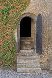 Entry door of a dungeon. Opened entry door of a dungeon with stairs Stock Photos