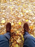 Entspannen Sie sich auf den Blättern Stockfotos