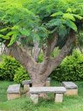 Entspannen Sie sich Bank unter Baum Stockbilder