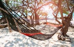 Entspannen Sie sich die Wiege, die mit dem Strandbaum hanking ist lizenzfreies stockbild