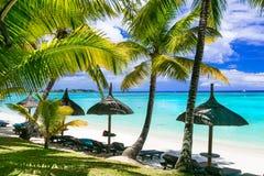 Entspannende tropische Landschaft - beauti Palm Beach in Mauritius-Insel stockfotos