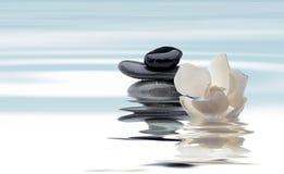 Entspannender Badekurort mit Wasser und Blumen bewirken Weinlese stockbild