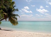 Entspannender maledivischer Strand Stockfoto