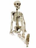 Entspannendes Skelett Lizenzfreie Stockfotos