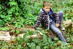 Entspannt und ruhig Wenig Junge das Sitzen auf Baum sich entspannen Wenig Junge entspannen sich im Holz Entspannen Sie sich, Lebe lizenzfreie stockbilder