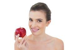 Entspanntes natürliches braunes behaartes Modell, das einen roten Apfel hält Stockfotografie