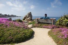 Entspannung an der Küste Stockbild