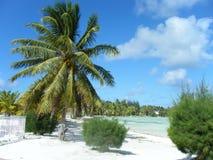 Entspannung durch den Ozean Lizenzfreie Stockfotografie
