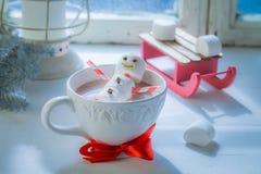 Entspannung im heißen Kakaoschneemann für Weihnachten und Pferdeschlitten lizenzfreie stockfotografie