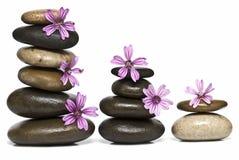 Entspannung mit Blumen und Steinen. stockfotografie