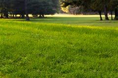 Entspannung und Sonnenuntergang im Park Lizenzfreie Stockfotografie