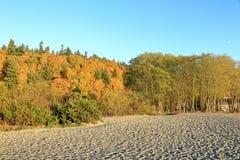 Entspannungsnachmittag an den goldenen Gärten parken, Seattle Washington lizenzfreie stockfotografie