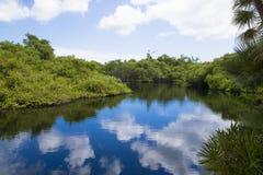 Entspannungsszene in Grand Cayman-Inseln stockfotos
