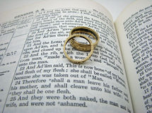 Entstehungsgeschichte-Hochzeits-Versprechen und Ringe Lizenzfreies Stockbild