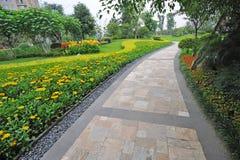 Entsteinen Sie Pfad mit gelben Blumen lizenzfreies stockbild