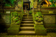 Entsteinte Zahlen im Eingebung des Affen Forest Sanctuary, des Naturreservats und des Komplexes des hindischen Tempels in Ubud, B Lizenzfreies Stockfoto