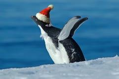 Entusiasmo de la Navidad Imágenes de archivo libres de regalías