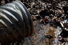entwässerung lizenzfreies stockbild