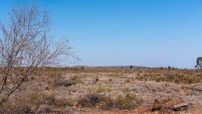 Entwaldetes Land in Australien stockfotos