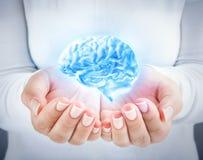 Entwickeln Sie das Talent und den Intellekt schützen Lizenzfreie Stockfotos
