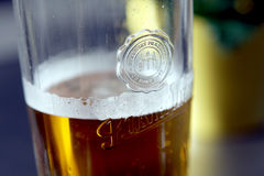 Entwurfs-blondes Bier Lizenzfreies Stockbild
