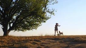 Entzückende junge Frau, die Betrieb mit ihrem netten Hund auf Natur während des Sonnenuntergangs spielt stock video footage