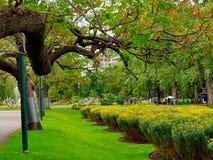 Entzückende, ruhige Landschaft von Fitzroy-Gärten in Melbourne lizenzfreies stockfoto