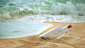 Entzückende Stern-Fische, die entlang den Strand gehen lizenzfreies stockbild