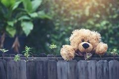 Entzückender flaumiger Teddy Bear im Park Abbildung der roten Lilie Stockbild