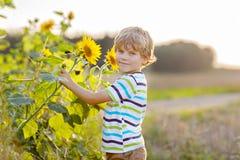Entzückender kleiner blonder Kinderjunge auf Sommersonnenblumenfeld draußen Lizenzfreies Stockbild