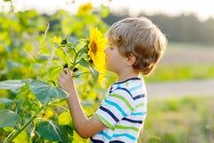Entzückender kleiner blonder Kinderjunge auf Sommersonnenblumenfeld draußen Stockfotografie