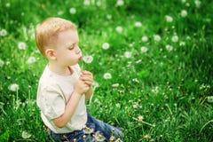 Entzückender kleiner Junge, der auf einem Löwenzahn auf einem grünen Frühling mea durchbrennt Stockfotos