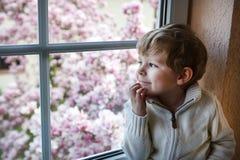 Entzückender Kleinkindjunge, der aus dem Fenster heraus schaut Stockbilder
