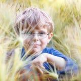 Entzückender Vorschülerkinderjunge mit Gläsern auf dem Weizengebiet Stockbild