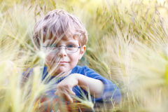Entzückender Vorschülerkinderjunge mit Gläsern auf dem Weizengebiet Stockbilder